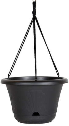 Bloem Lucca Self-Watering Plastic Hanging Planter