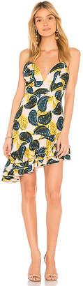 C/Meo Temptation Mini Dress