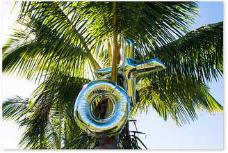 Xo Gray Malin Palm Tree Top Art