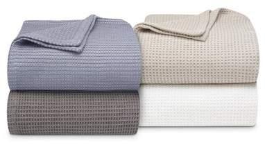 Wayfair Bevers 100% Cotton Blanket