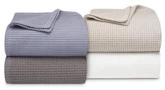 Vera Wang Joss & Main Essentials Cotton Blanket