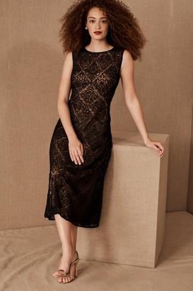 Tadashi Shoji Durand Dress