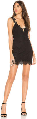 Free People Night Moves Bodycon Dress