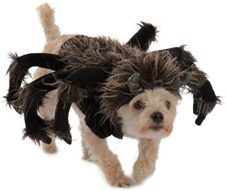 Princess Paradise Tarantula Dog Costume