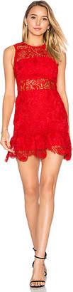 Karina Grimaldi Felicia Lace Mini Dress