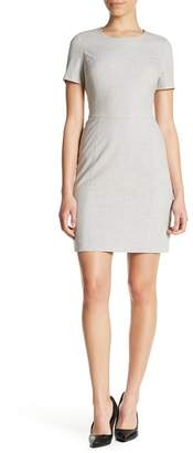 Amanda & Chelsea Short Sleeve Structured Dress (Petite)