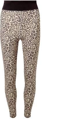 Dorothy Perkins Womens Brown Leopard Print Gym Leggings