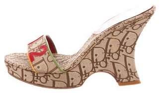 Christian Dior Rasta Platform Sandals