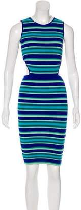 Ronny Kobo Sleeveless Bodycon Dress w/ Tags