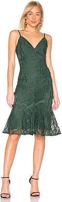 Aijek Love Is Embroidered Fit Flare Dress