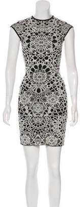Alexander McQueen Mini Sheath Dress