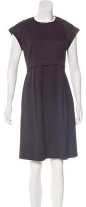 Celine Knee-Length Shift Dress