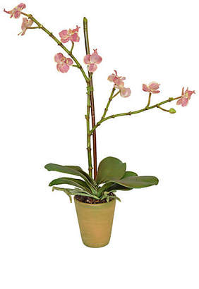 """20"""" Mini Orchid Arrangement - Faux - The French Bee"""