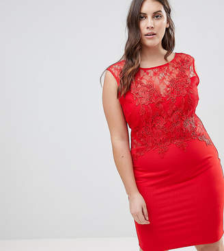 4a2a15a1ff5a9 Lipsy Curve Lace Applique Bodycon Dress