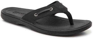 Sperry Havasu Sandal - Men's