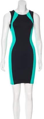 David Lerner Sleeveless Bodycon Dress