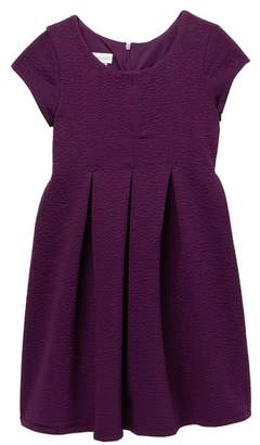 Iris & Ivy Textured Pleated Dress (Big Girls)