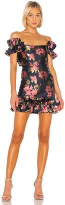 V. Chapman Hollyhock Dress