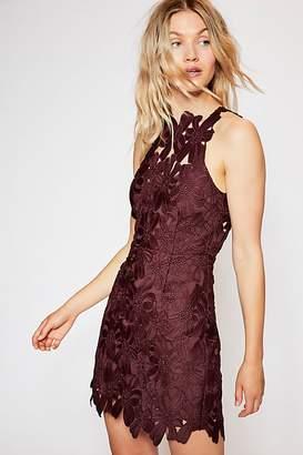 Saylor Jessa Lace Mini Dress