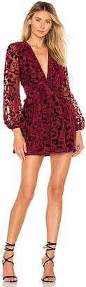 Lovers + Friends Betsy Mini Dress