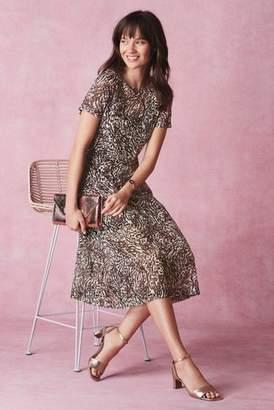 Next Womens Animal Mesh Dress