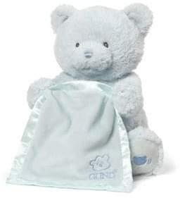 Gund Blue My First Teddy Peek-A-Boo