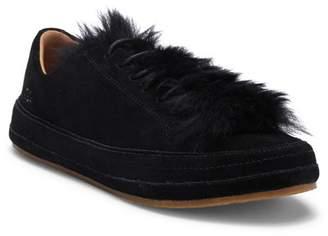UGG Blake Genuine Lamb Fur Sneaker
