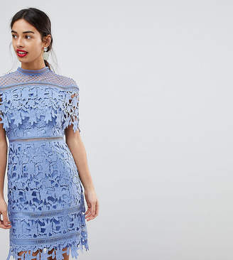 Chi Chi London Petite Lace High Neck Pencil Midi Dress
