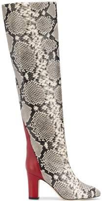 Couture Gia python print knee high boots