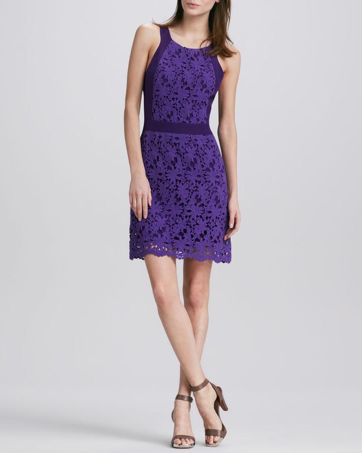 Ali Ro Lace Knit Dress