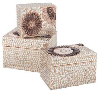 Small Capiz Shell Urchin Boxes