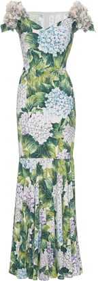 Dolce & Gabbana Appliqud Floral-Print Gown $6,195 thestylecure.com