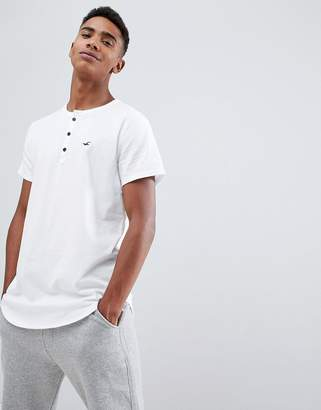 Hollister solid henley t-shirt seagull logo slim fit in white