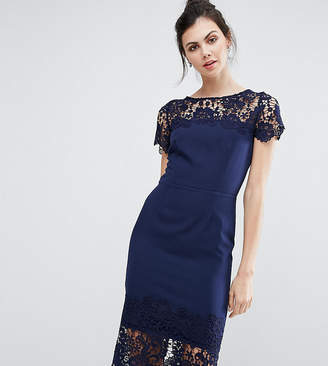 Paper Dolls Tall Lace Contrast Midi Ribbed Pencil Dress With Belt