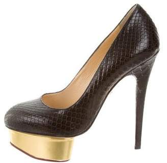 Charlotte Olympia Python Dolly Pumps
