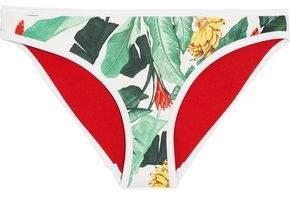 Duskii Oasis Printed Neoprene Bikini Briefs