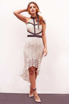 Next Womens Sistaglam All Over Lace High Low Bodycon Dress
