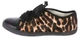 Lanvin Ponyhair Cap-Toe Sneakers