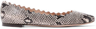 Chloé Lauren Scalloped Snake-print Leather Ballet Flats - Snake print