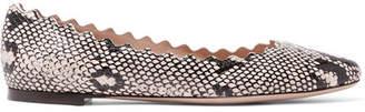 Chloé Lauren Scalloped Snake-print Leather Ballet Flats - Snake print