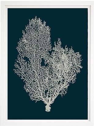 Beach Lane Deep Blue Coral Framed Print, 60x80cm