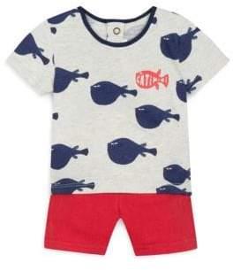 Catimini Baby Boy's Two-Piece Cotton T-Shirt& Shorts Set - Grey - Size 3 Months
