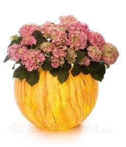 LED-Pflanzkübel Flora Sahara, akkubetrieben