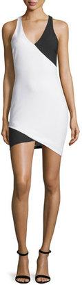 Elizabeth and James Tali Sleeveless Two-Tone Dress, Ivory/Black $365 thestylecure.com