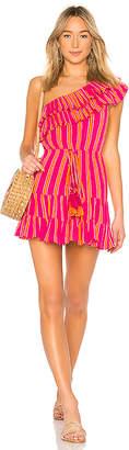 Lovers + Friends Amity Mini Dress