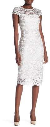 Marina Scalloped Hem Lace Dress