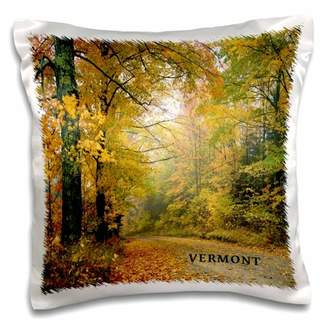Country Road 3dRose Vermont Country Road, Pillow Case, 16 by 16-inch