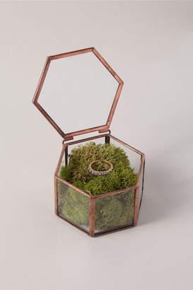 New View Whichgoose Glass Trinket Box