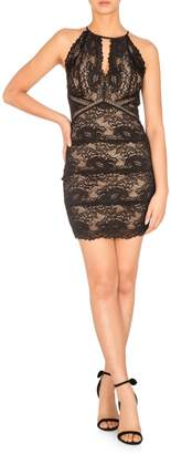 GUESS Hazely Lace Bodycon Dress