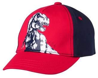 Gymboree Rex Cap